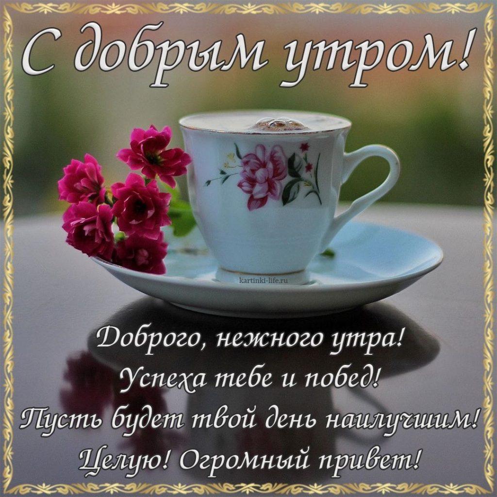 желают самые добрые пожелания доброго утра в картинках след году